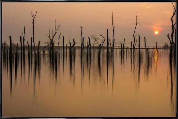 Drowned Forest - Piet Haaksma - Poster im Kunststoffrahmen
