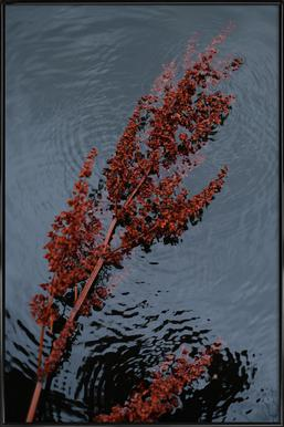 Blooming - Poster im Kunststoffrahmen