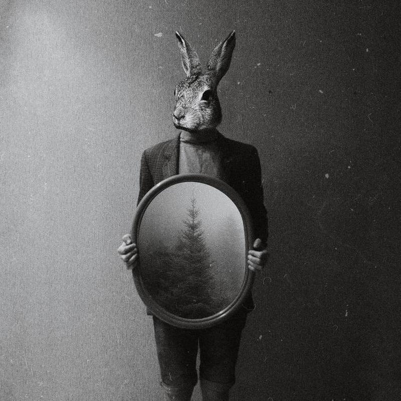 Animals in my room - Rabbit toile