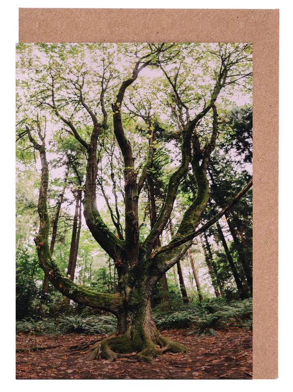 Forest Magic Greeting Card Set