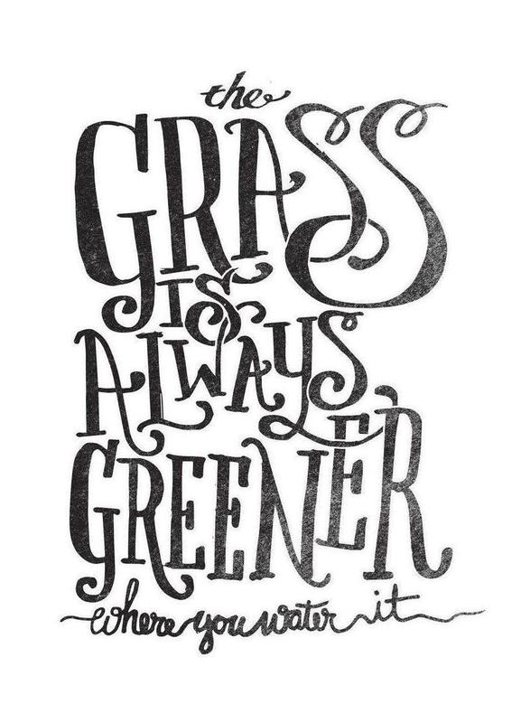 the grass is always greener toile