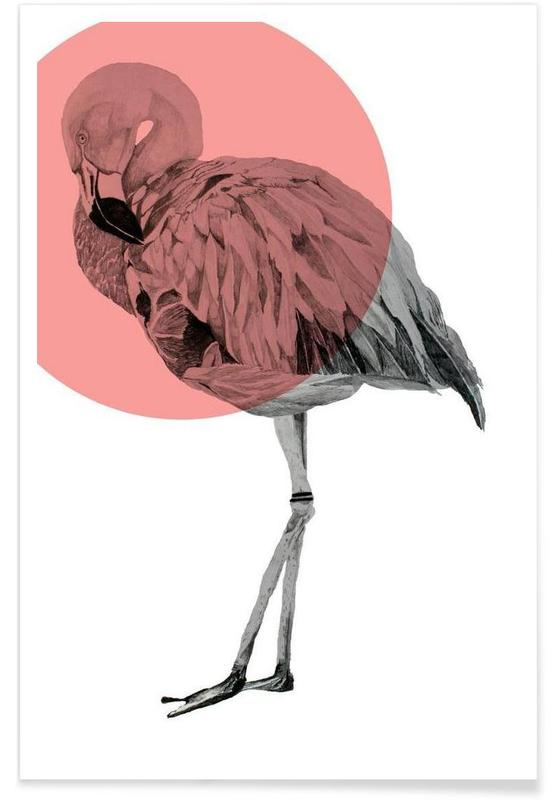 Flamingo Drawing Poster