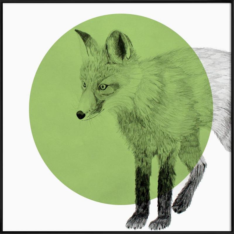 Fox Framed Poster