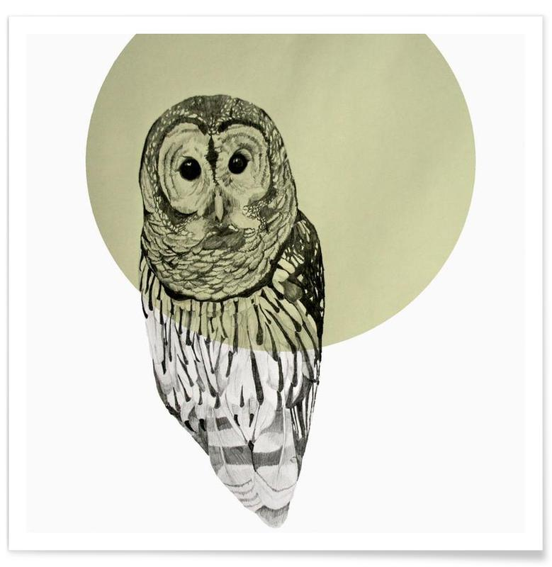 Owl Drawing Poster