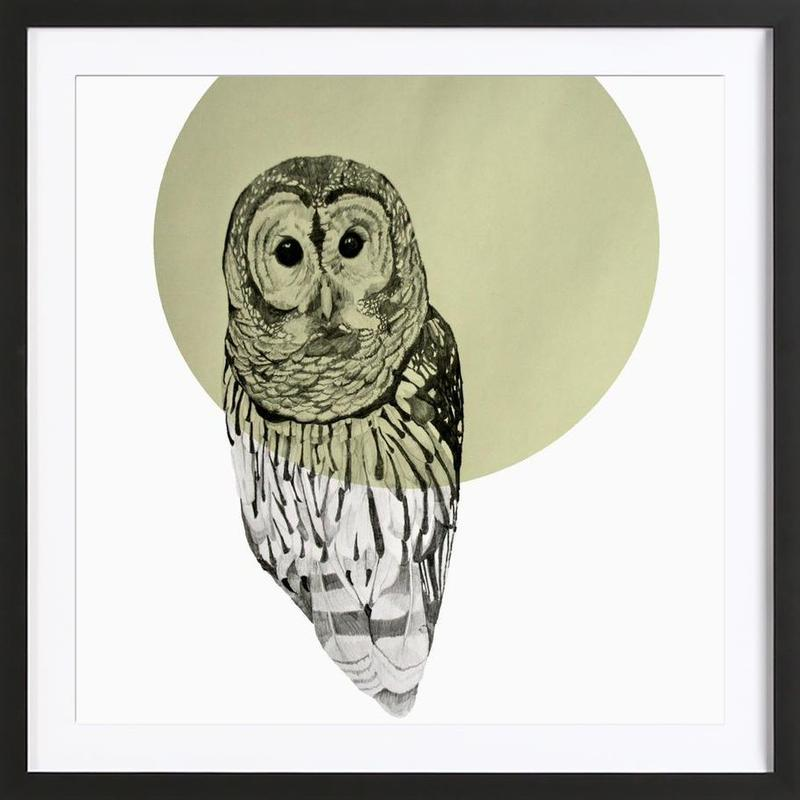 Owl -Bild mit Holzrahmen