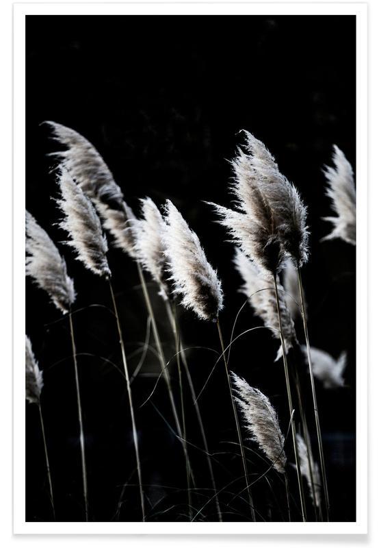 Grass 4 -Poster