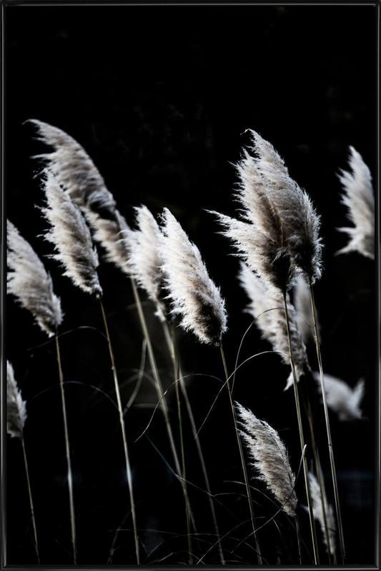 Grass 4 -Bild mit Kunststoffrahmen