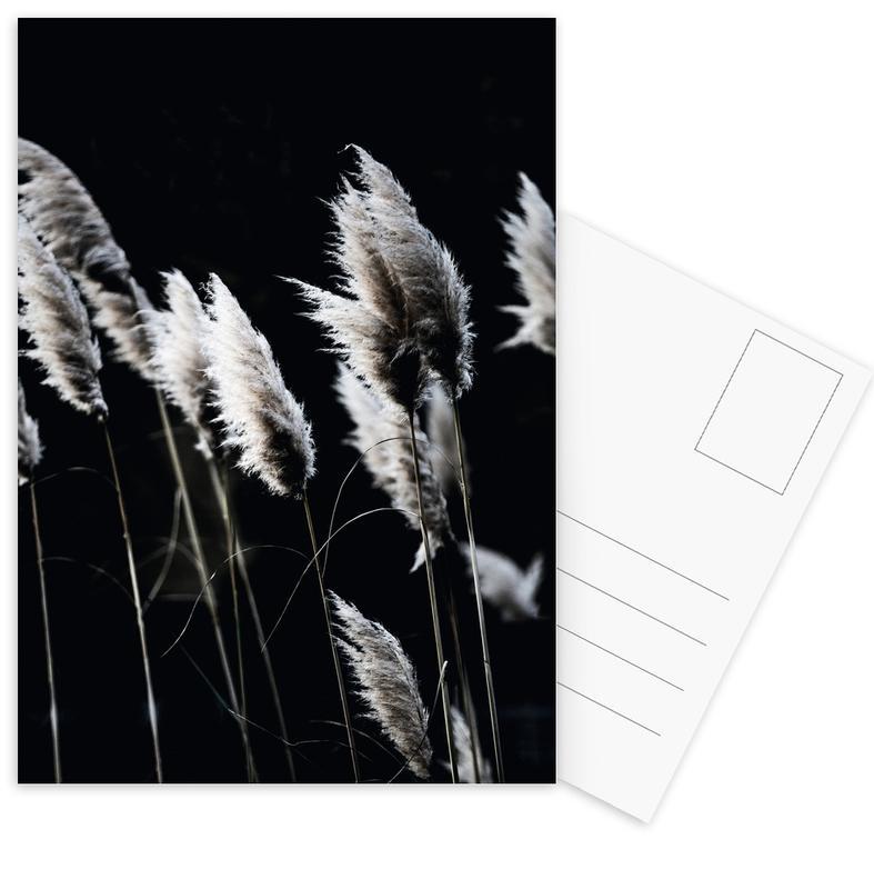 Grass 4 -Postkartenset
