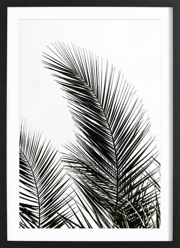 Palm Leaves 1 affiche sous cadre en bois