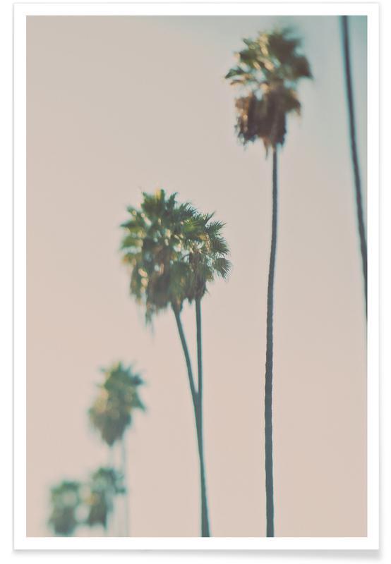 Blurry Palms Color affiche