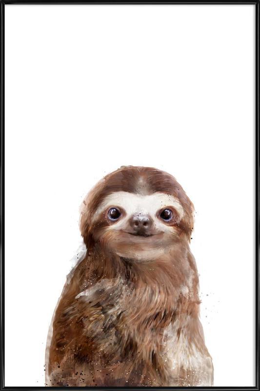 Little Sloth Framed Poster
