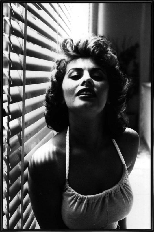 Sophia Loren Portrait affiche encadrée