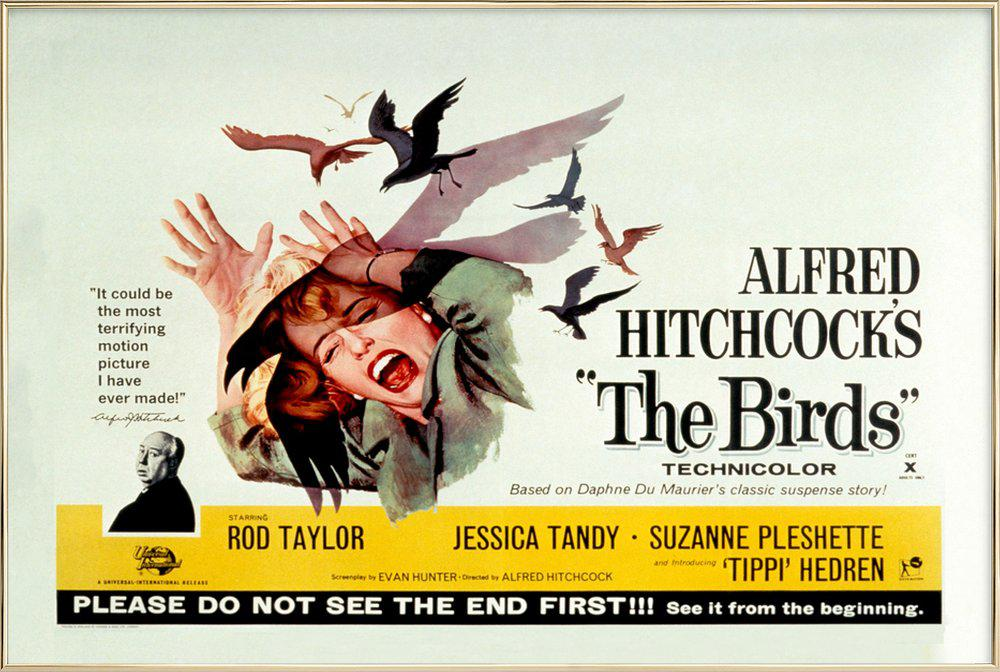 Alfred Hitchcock 'The Birds' Retro Movie Poster -Poster im Alurahmen