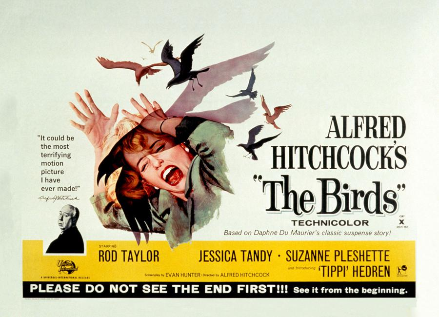 Alfred Hitchcock 'The Birds' Retro Movie Poster Canvas Print