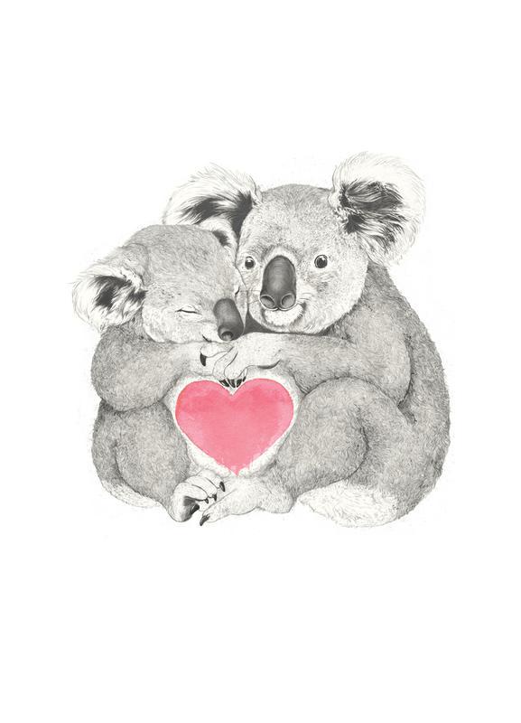 Koala -Leinwandbild