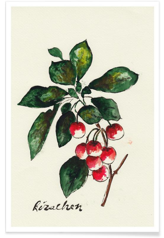 Kirschen -Poster