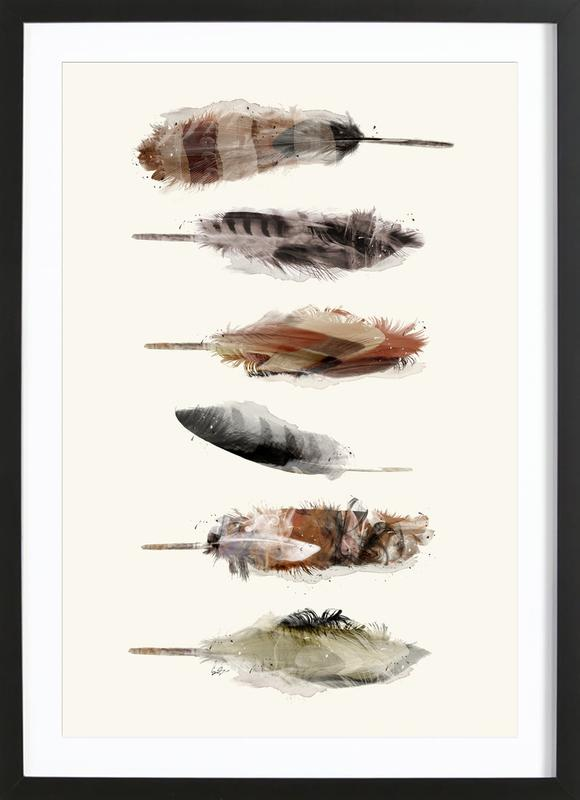 Free Fall Feathers Framed Print