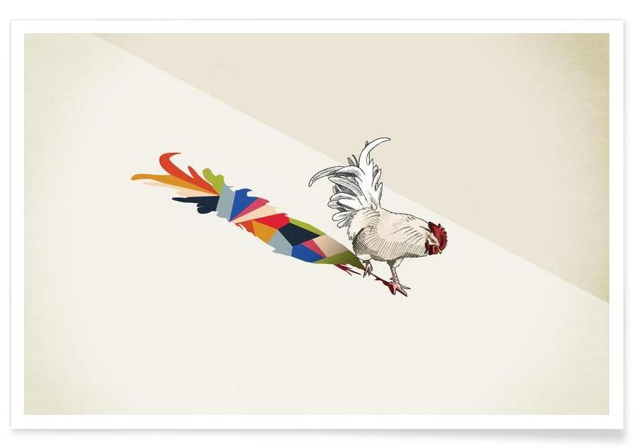 Walking Shadow - Rooster affiche
