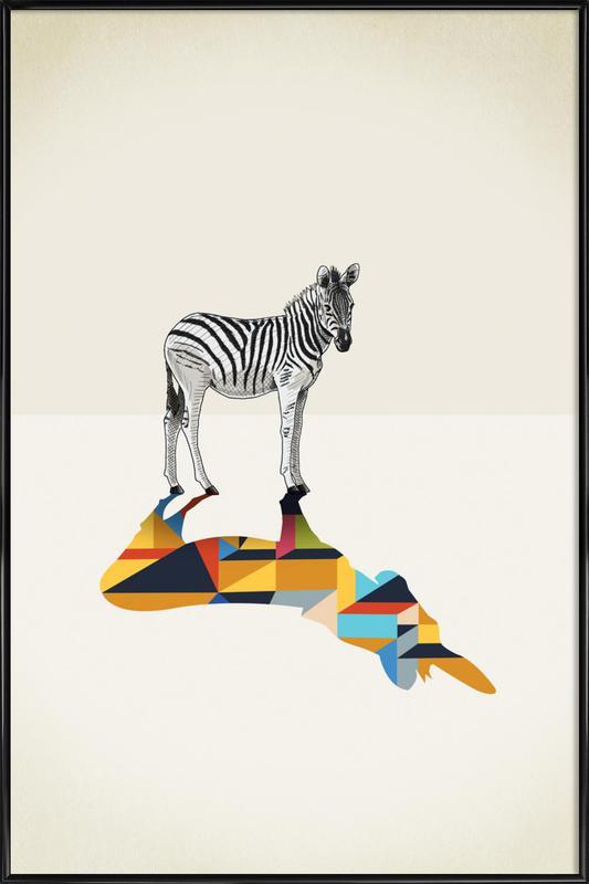 Walking Shadow - Zebra -Bild mit Kunststoffrahmen