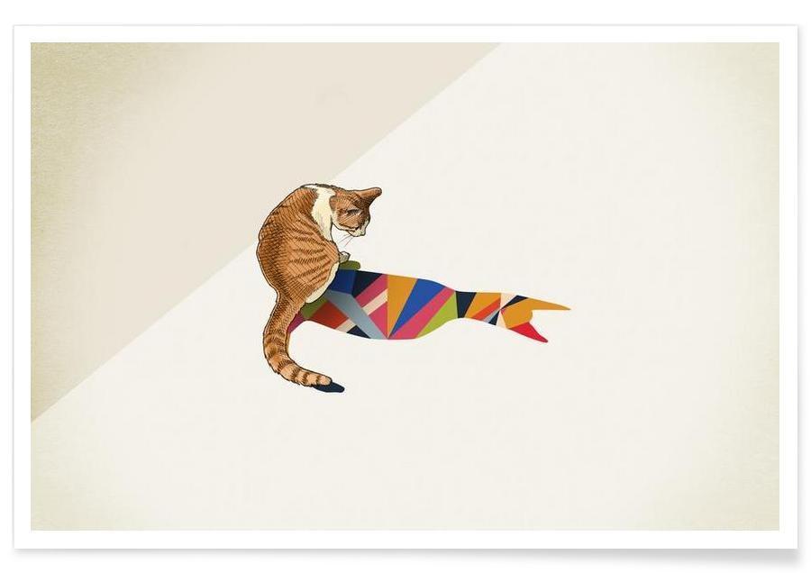 Walking Shadow - Cat 2 affiche