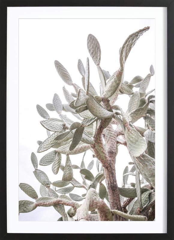 Desert Prince 1 Framed Print