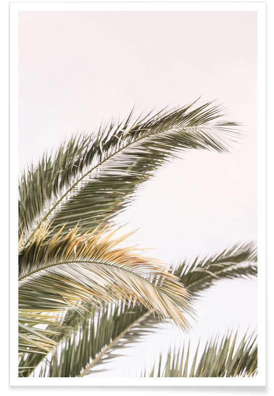 Oasis Palm 3 -Poster