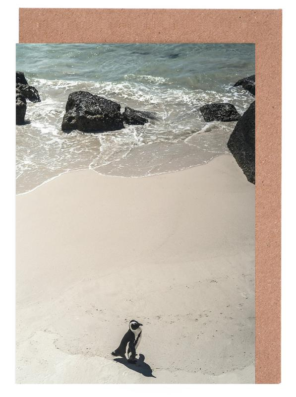 Solo Penguin Greeting Card Set