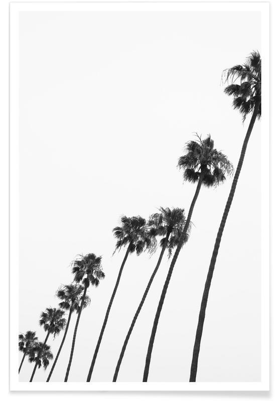 Cali Palms Poster