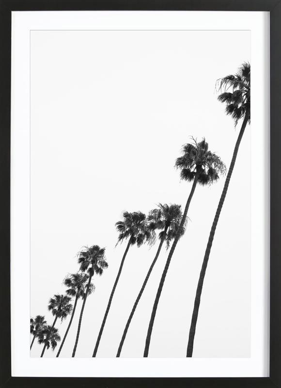 Cali Palms -Bild mit Holzrahmen