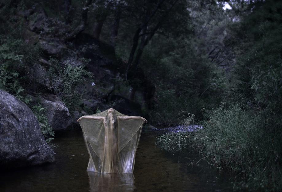 River Stories Aluminium Print
