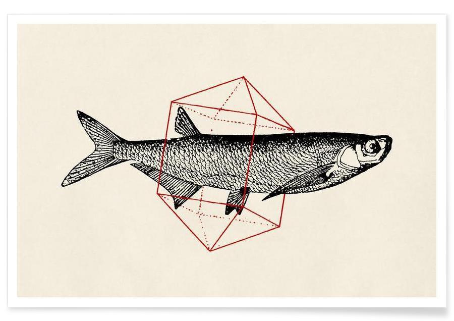 Fish in Geometrics II affiche