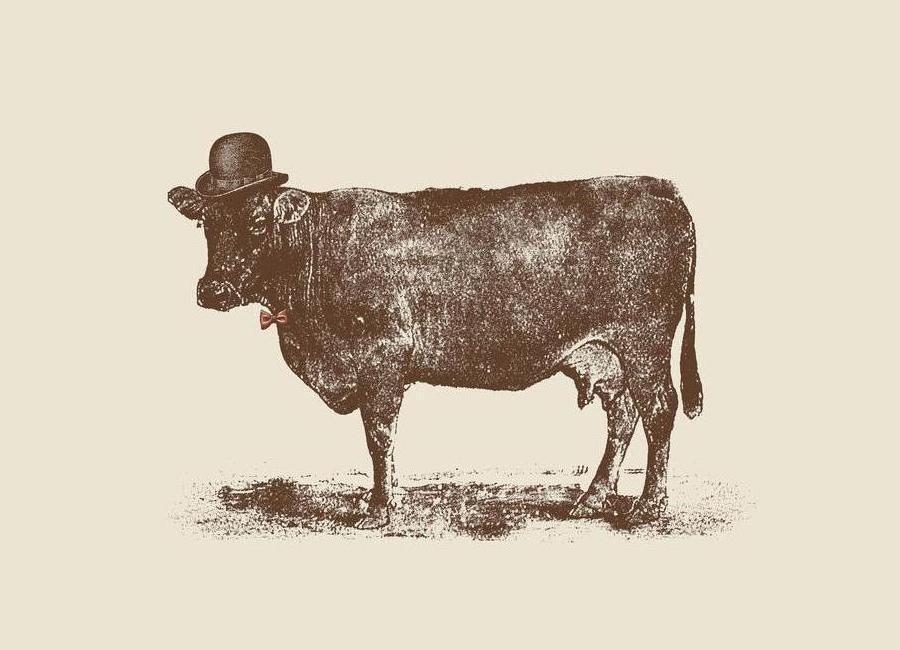 Cow Cow Nut canvas doek