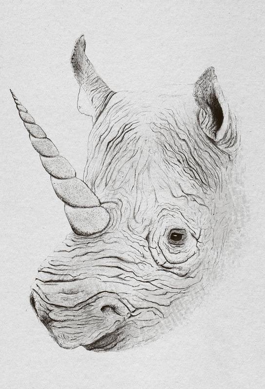 Rhinoplasty Aluminium Print