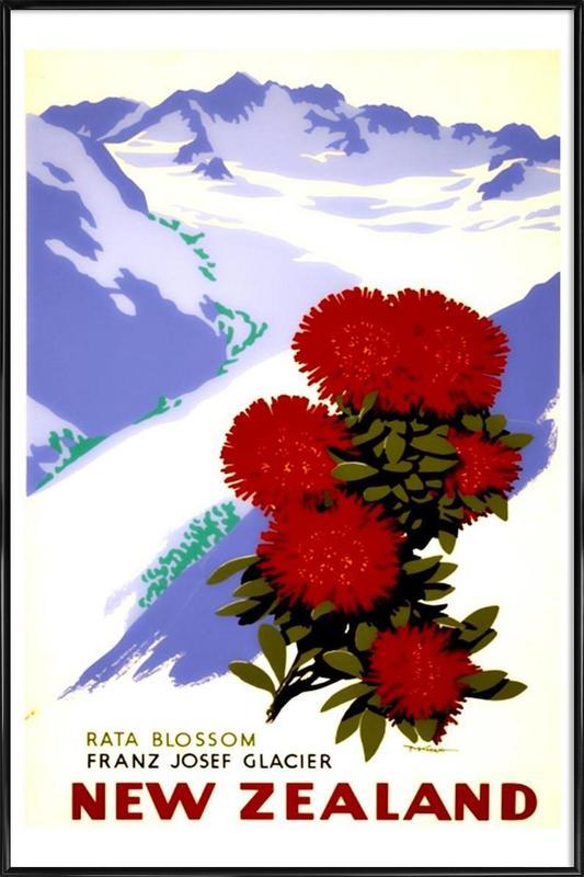 newzealand2 Framed Poster