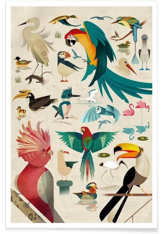 Vintage Birds Poster