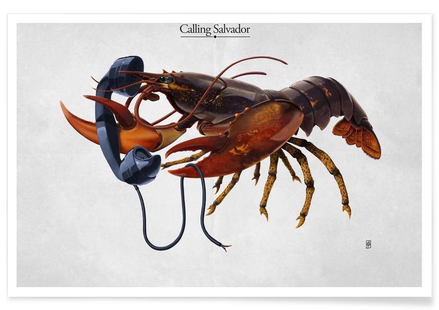 Calling Salvador (titled) -Poster