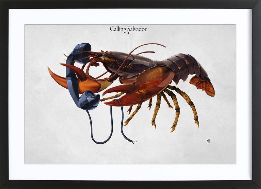 Calling Salvador (titled) Framed Print