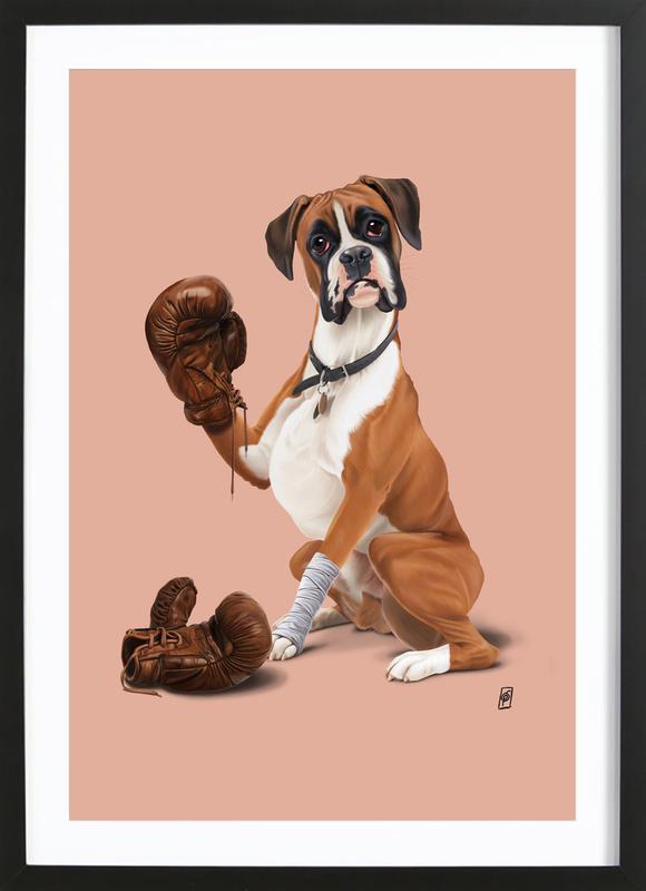 The Boxer (Colour) -Bild mit Holzrahmen