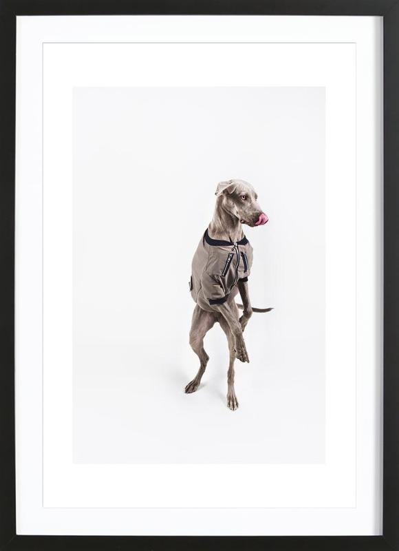 The Tailwaggers 6-2 Framed Print