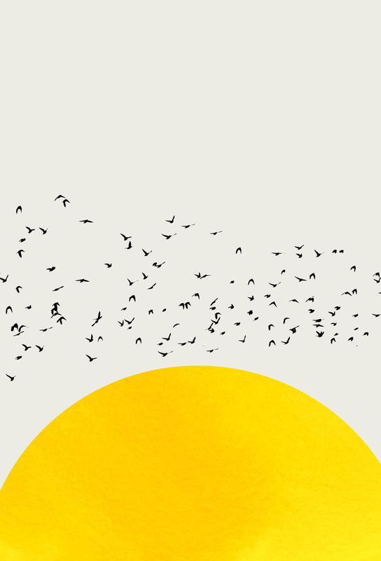 A Thousand Birds Akrylglastavla