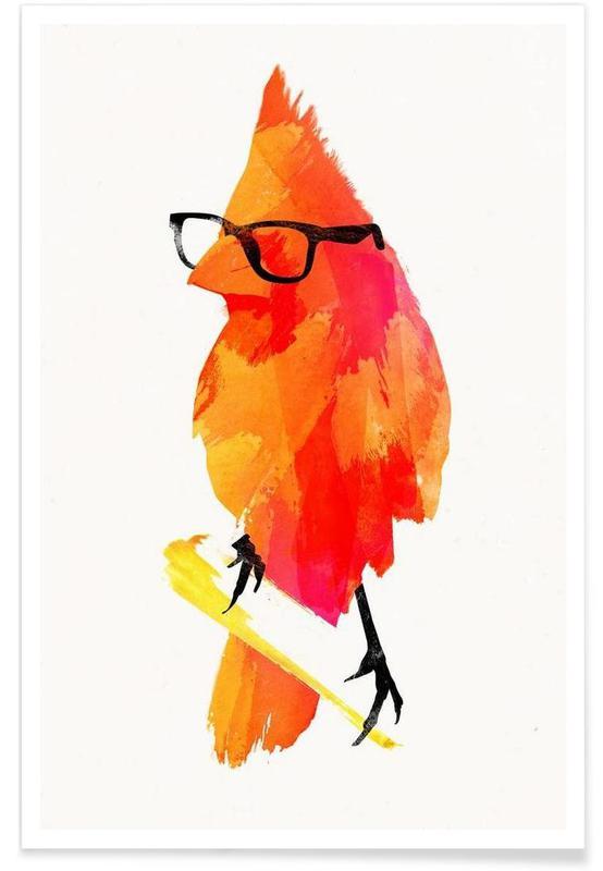 Punk birdy affiche