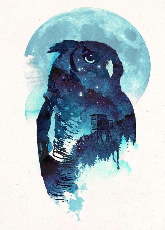 Midnight owl -Leinwandbild