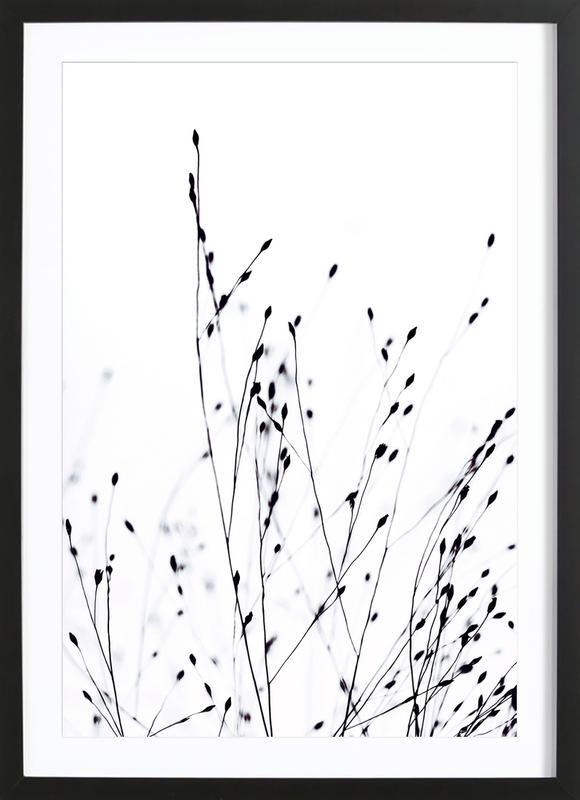 Black Grass Framed Print