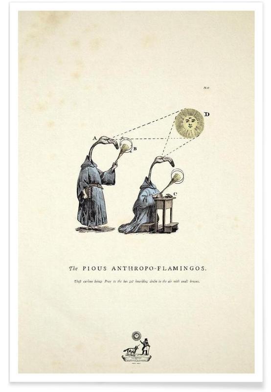 The pious anthropo-flamingos -Poster