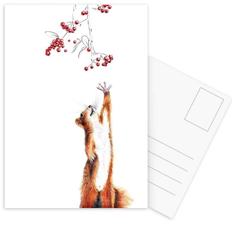 Squirrel Postcard Set