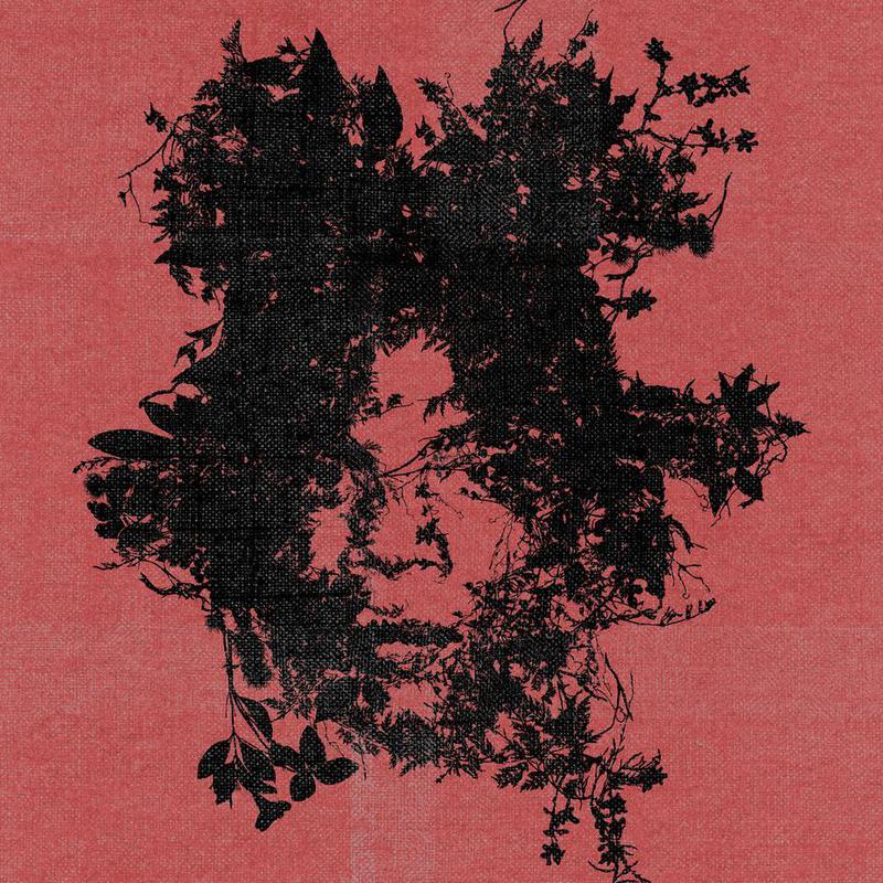Basquiat Acrylic Print