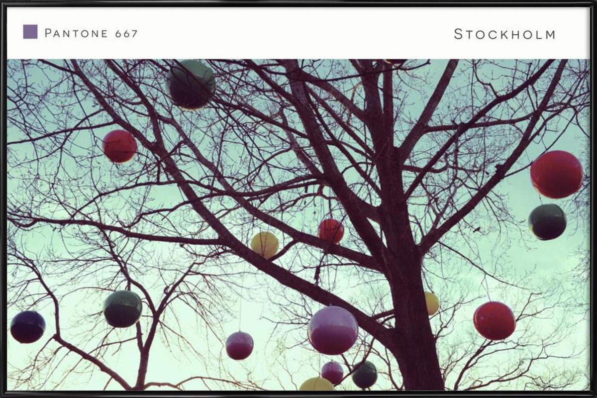 Stockholm Pantone 667 Framed Poster