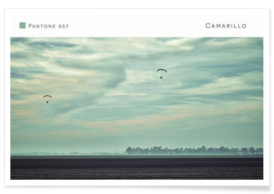 Camarillo Pantone 557 -Poster