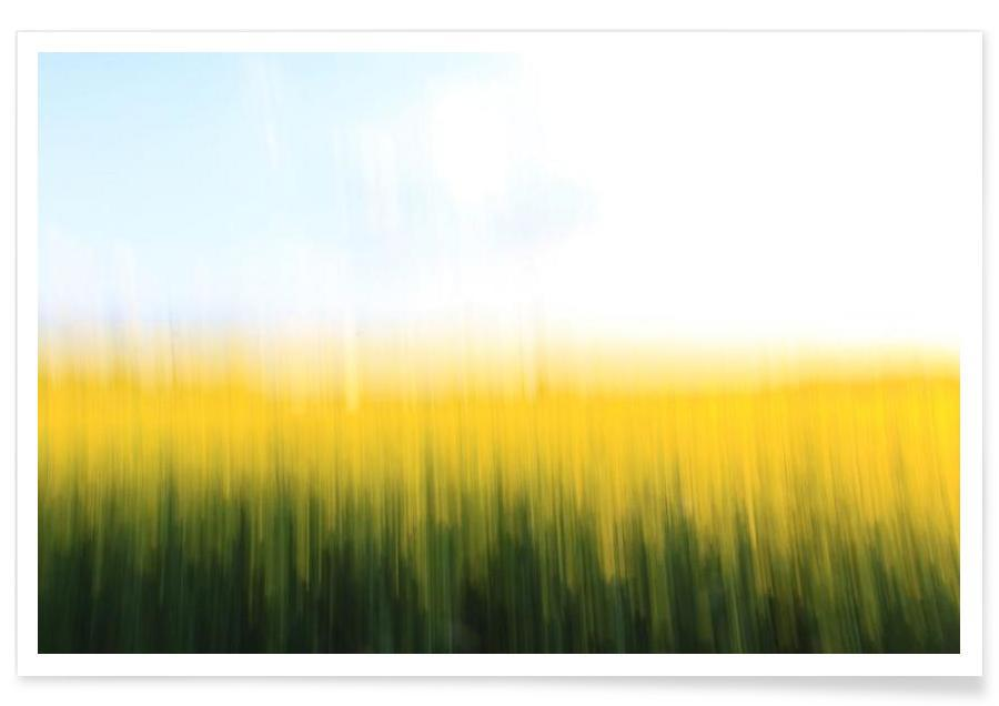 Fields Of Gold 01 Poster