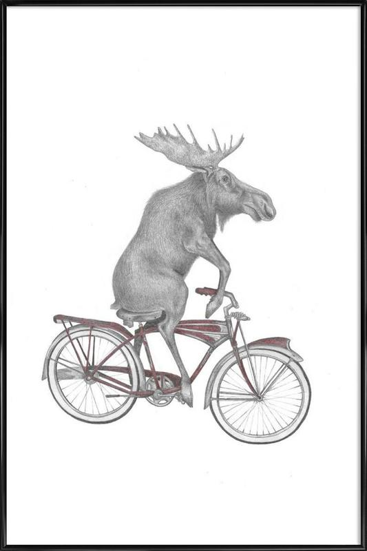 Murray Maynooth Moose Framed Poster